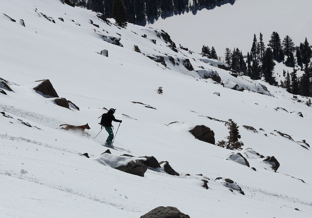 Carson Pass Backcountry skiing