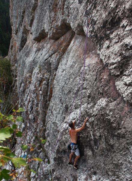 climbing rodeo wall - thelma
