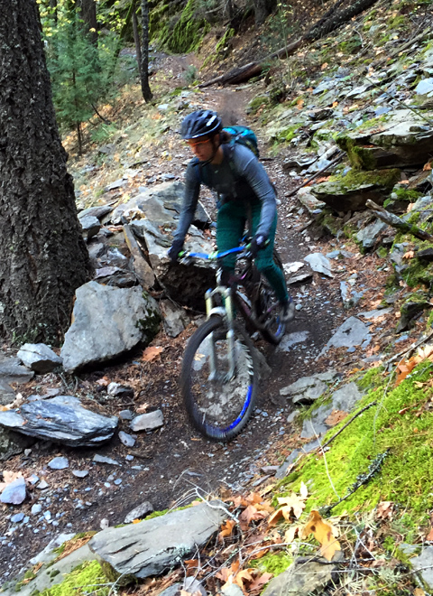 downieville mountain biking