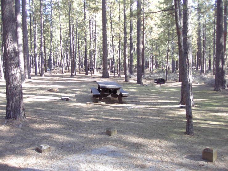 Nevada Beach Lake Tahoe Camping